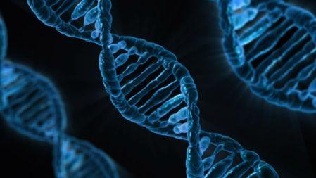 遺伝的に脂性肌のDNAのイメージ図
