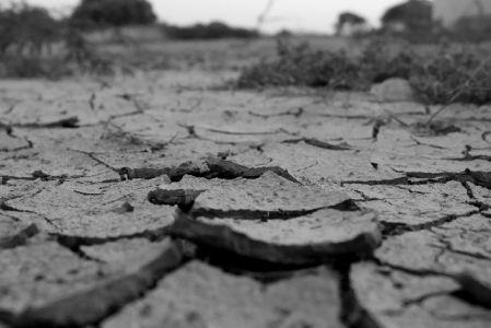 乾燥肌をイメージした乾燥した土地の白黒写真