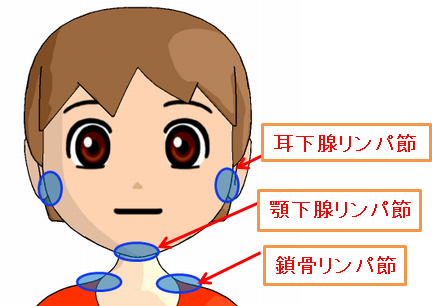 リンパマッサージに大切な3つのリンパ節の図解
