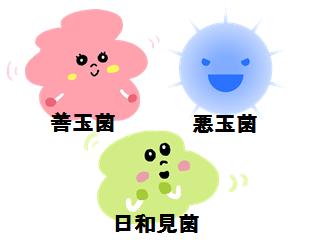 善玉菌、日和見菌、悪玉菌のイメージ図