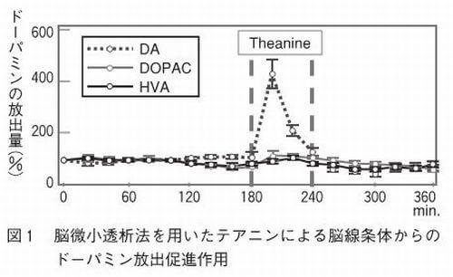 セロトニンの摂取によるドーパミンの分泌の増加量を表すグラフ